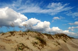 Outer Banks Dunes