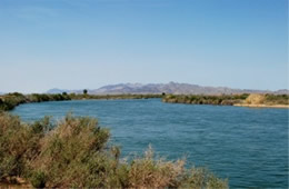 Colorado River at I-10
