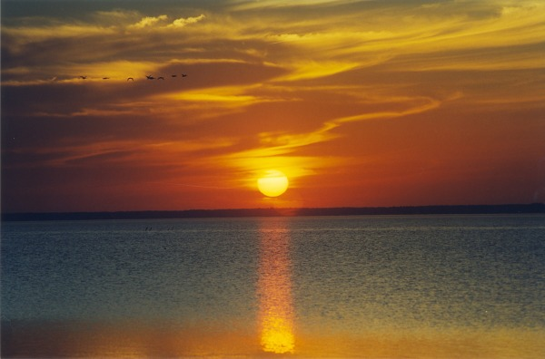 currituck sound sunset