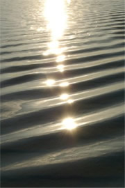 Sun Reflecting on Ripples