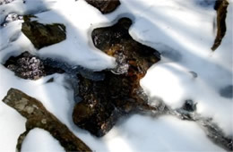 Stream Ice and Snow